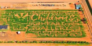 Farm maze at Vertuccio Farms