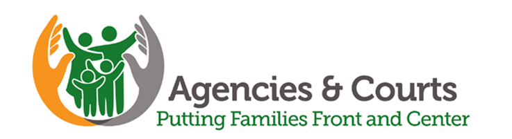 Agencies & Courts: Putting Families Front and Center Activity and Discussion Guide